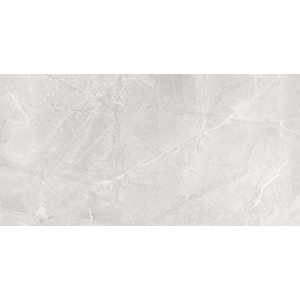 Dazzle Elegant Armani 60x120 Silver Matt