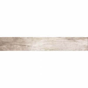 Enthra 20x120 Silver Polished