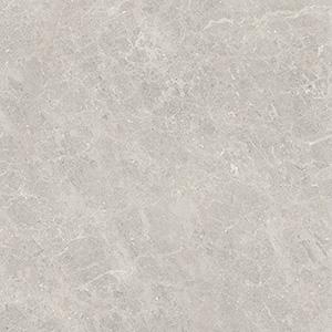 Fossil 60x60 Grey Gloss
