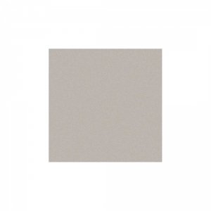 True 60x60 Light Grey Matt