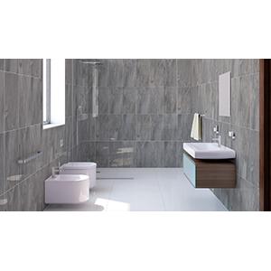 African Slate 30x60 Grey Matt