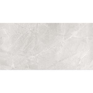 Dazzle Elegant Armani 30x60 Silver Gloss