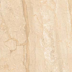 Dyno 60x60 Beige Polished 1
