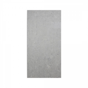 Essential 30x60 Light Grey Polished