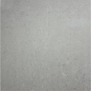 Essential 60x60 Light Grey Polished