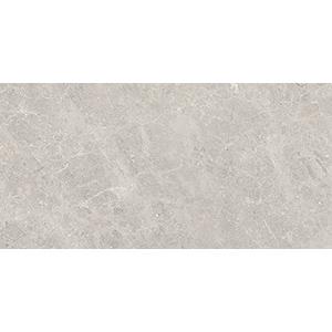 Fossil 30x60 Grey Gloss