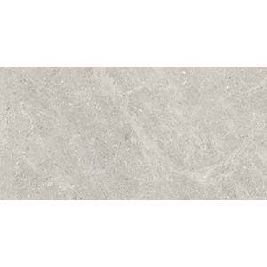 Fossil 30x60 Grey Polished 1