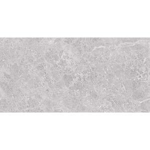 Fossil 30x60 Grey Gloss 1