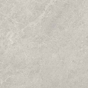 Fossil 60x60 Grey Polished
