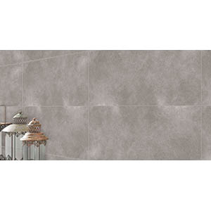 Golf Stone 30x60 Grey Matt