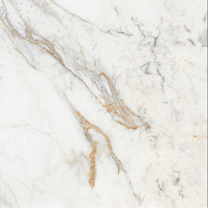 Icon Gold 60x60 White Polished