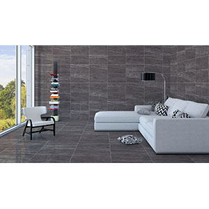 Jaipur 30x60 Grey Polished 2