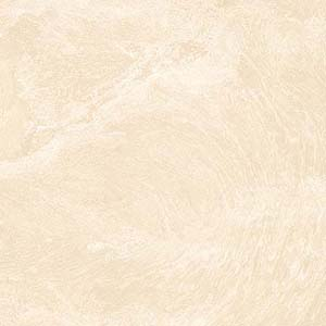 Oceanic 60x60 Crema Polished