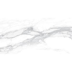 Pantheon 30x60 White Polished
