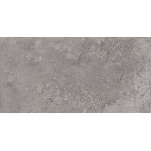 Roma 30x60 Grey Gloss