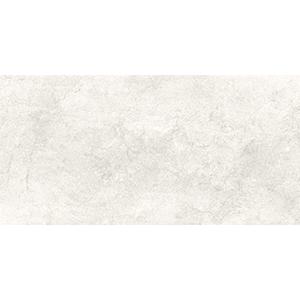 Stone 30x60 Beige Gloss