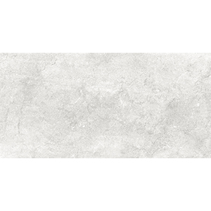 Stone 30x60 Grey Gloss