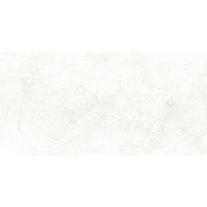 Stone 30x60 White Gloss