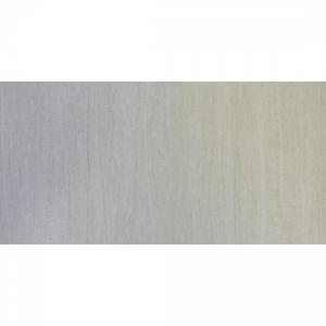 Striato 30x60 White R9
