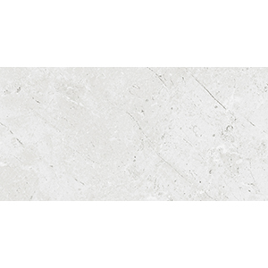 Walden Stone 30x60 White Matt