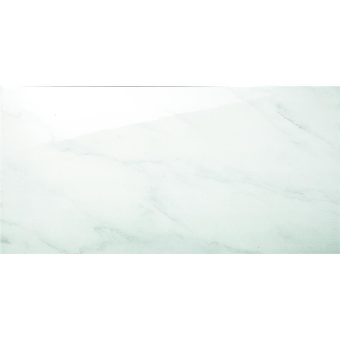 Alberta 30x60 Grey Gloss 1