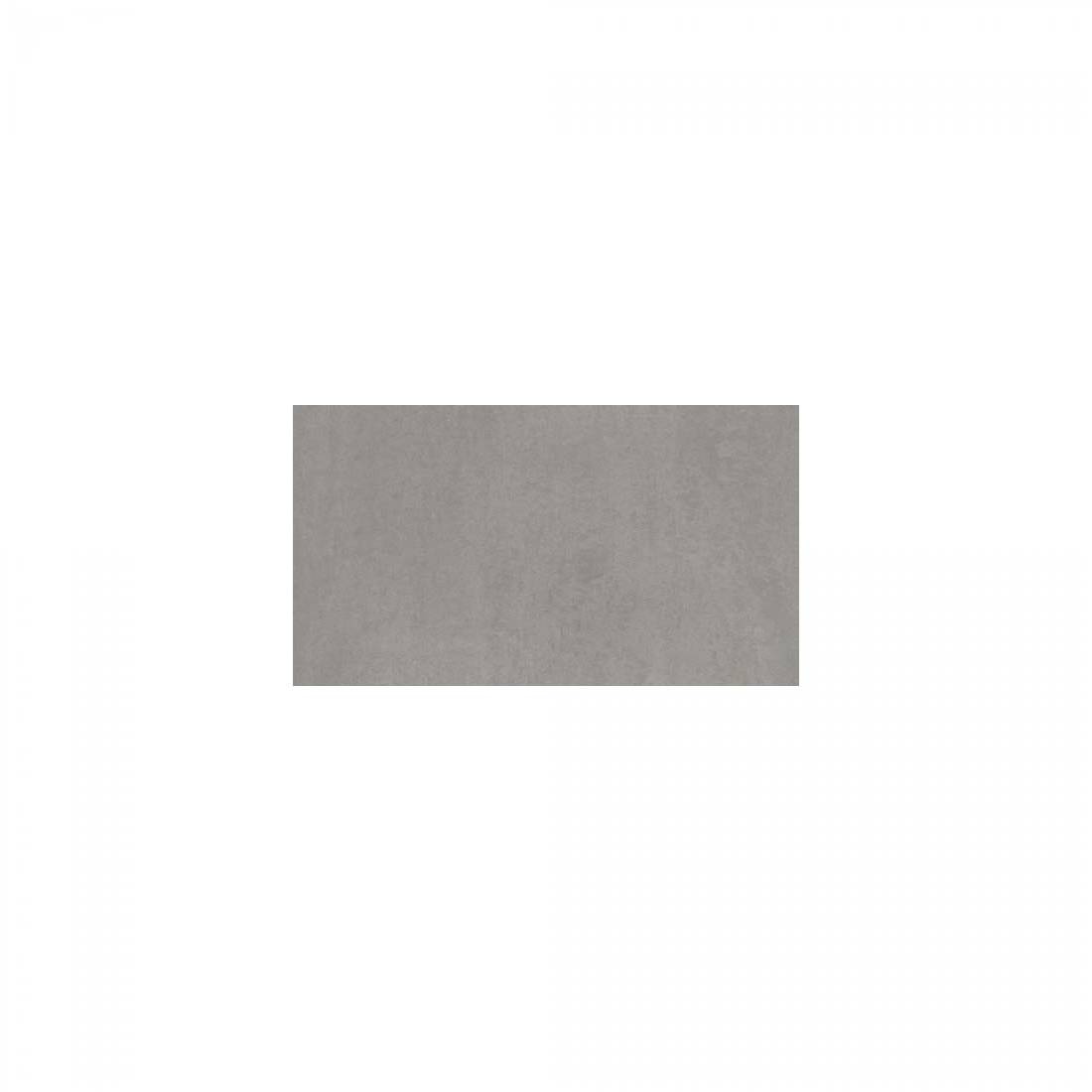 Arena 30x60 Light Grey Polished 1