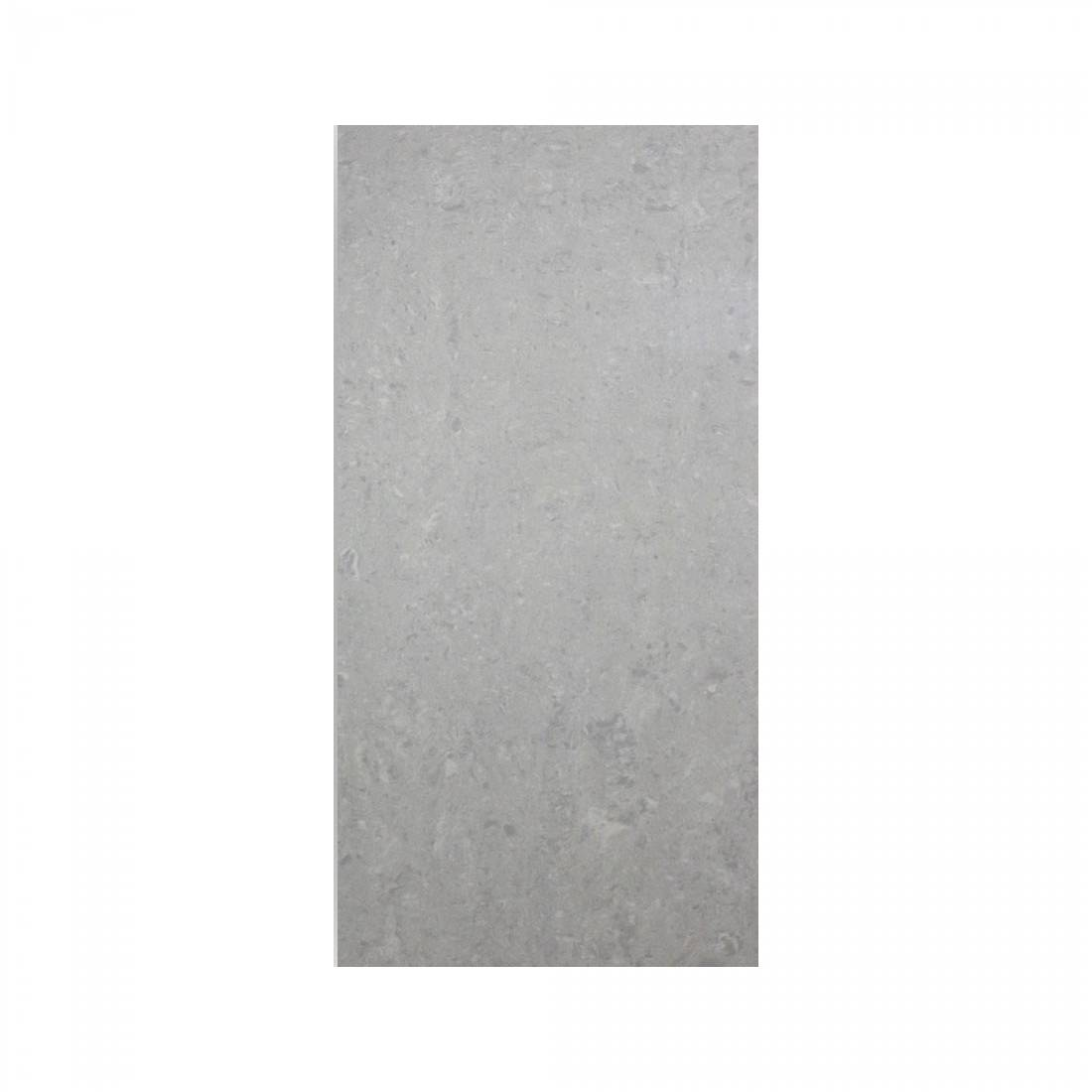 Essential 30x60 Light Grey Polished 1