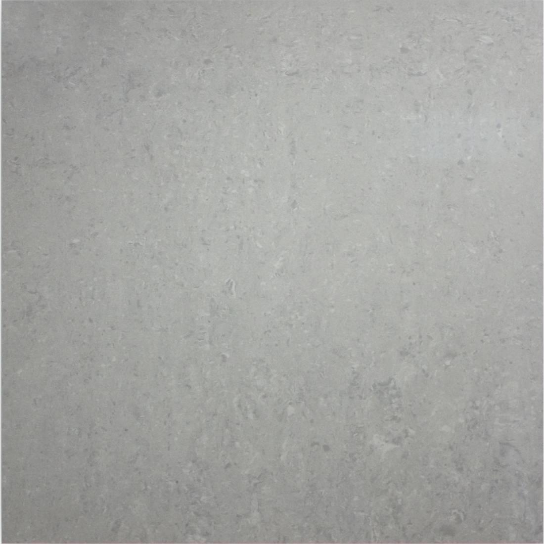 Essential 60x60 Light Grey Polished 1