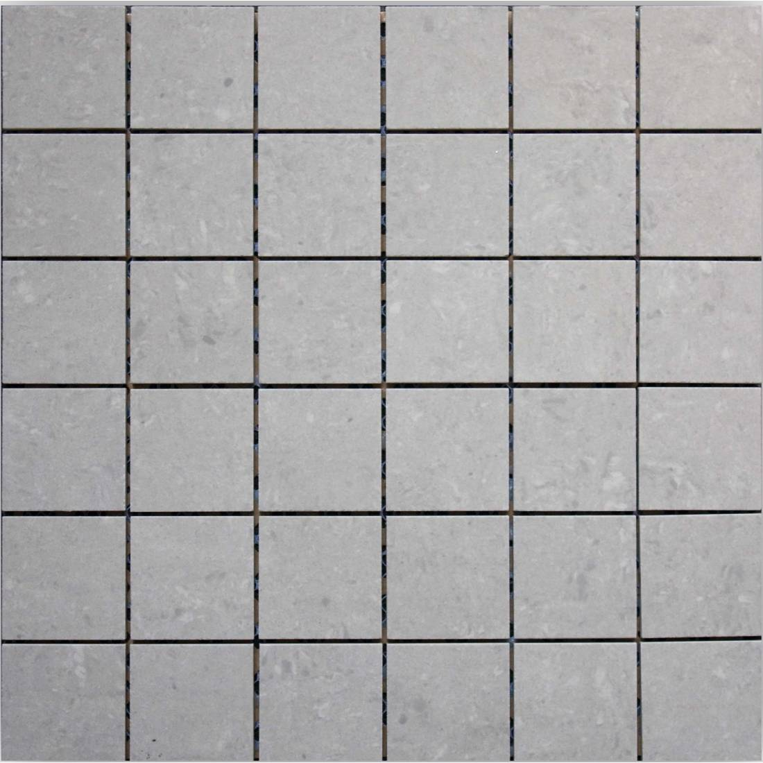 Essential 30x30 Light Grey Polished 1