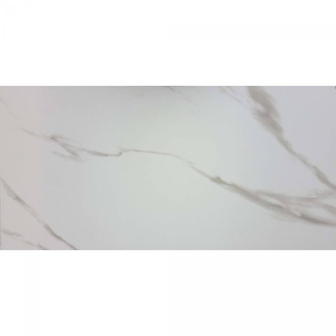 Matt Carrara 30x60 White Matt 1