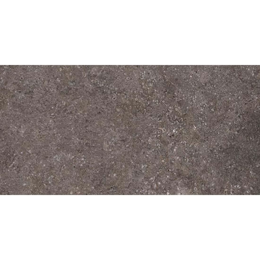 Parvati 30x60 Charcoal Matt 1