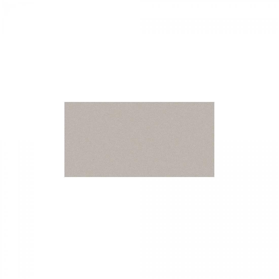 True 30x60 Light Grey Matt 1