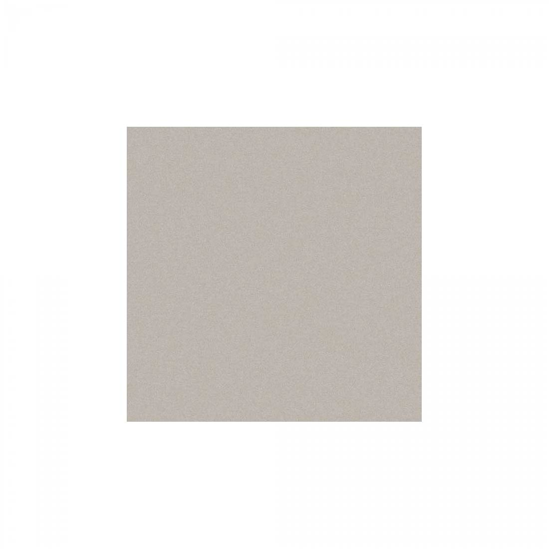 True 60x60 Light Grey Matt 1