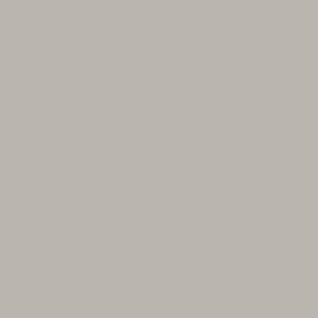 True 60x60 Light Grey Polished 1