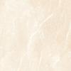Armani 60x60 Crema Polished 1