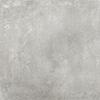 Assen 60x60x2 Grey Matt R11