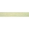 Candlewood 20x120 Beige Gloss