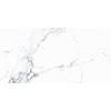 Statuario Bianco 30x60 White Matt