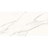 Superb Calacatta 60x120 White Gloss