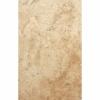 Travertine Amon 40.6x61 Ivory 1
